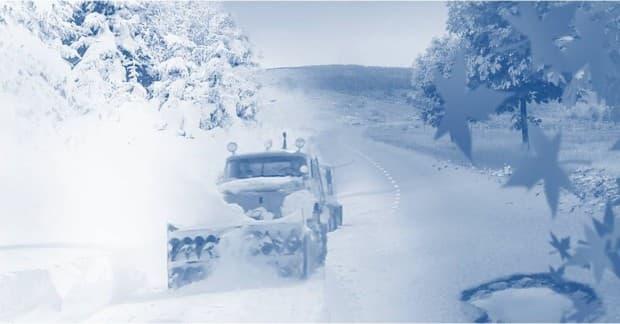 Focus sur la viabilité hivernale