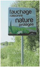 Fauchage-raisonn%C3%A9-.png